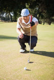 Sportsman analysing the field. On a golf course Stock Image