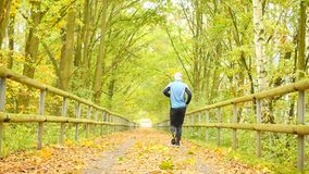 Sportsman in blue t-shirt and black trousers run on road. The man is slowly running on asphalt way covered by autumn leaves. Path stock video footage