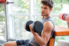 Sportsman doing exercises for biceps using dumbbells in jym Stock Photo