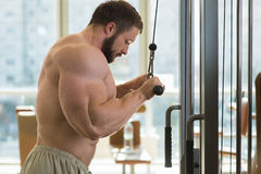 Sportsman doing pull-ups. Stock Image