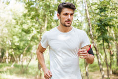 Sportsman with handband running in forest in the morning. Focused athletic young sportsman with handband running in forest in the morning Royalty Free Stock Photography