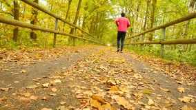 Sportsman in pink and black sportswear run on road. The man is slowly running on asphalt way covered by autumn leaves. Pathway stock video footage