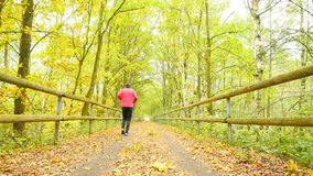 Sportsman in pink and black sportswear run on road. The man is slowly running on asphalt way covered by autumn leaves. Pathway stock video