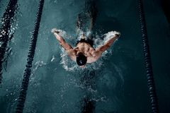 Sportsman in a swimming pool Royalty Free Stock Photos