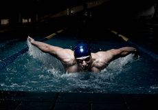 Sportsman in a swimming pool Royalty Free Stock Images
