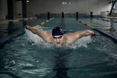 Sportsman in swimming pool Stock Photo