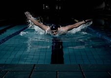 Sportsman in swimming pool Royalty Free Stock Images