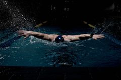 Sportsman in swimming pool Royalty Free Stock Photography