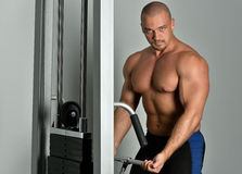 Sportsman torso doing exercises in a sport club Stock Photos