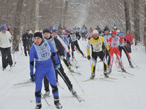 Sportsmans on the ski track Royalty Free Stock Photography