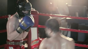 Sportsmen are boxing in the ring. stock footage