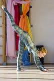 Sportsmen girl posing in fitness studio. Cute sportsmen girl posing on fitness studio Royalty Free Stock Images