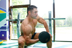 Sportsmen and gym. The young guy is engaged in a gym lifting dumbbells Royalty Free Stock Images