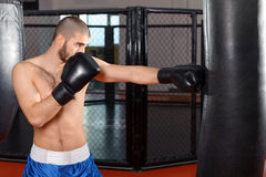 Sportsmen kicking punching bag Stock Photography