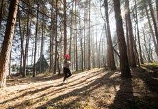 Sportswear и ход девушки нося в лесе на горе Стоковое фото RF