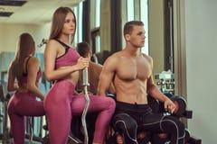 Sportswear vestindo dos pares desportivos novos, levantando em um gym fotografia de stock