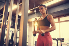 Sportswoman doing exercise for triceps in gym. Young female sportswoman doing exercise for triceps in gym royalty free stock images