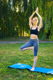 Sportswoman doing yoga exercises Stock Photography