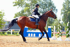 The sportswoman on a horse at competitions. Royalty Free Stock Image