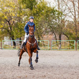 Sportswoman riding horse on equestrian competition Royalty Free Stock Image
