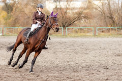 Sportswoman riding horse on equestrian competition Stock Image