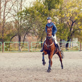 Sportswoman riding horse on equestrian competition Royalty Free Stock Photos
