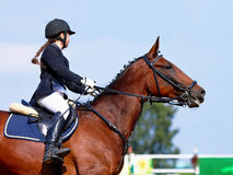The sportswoman on a sports horse. The sportswoman on a horse. The horsewoman on a red horse. Equestrianism. Horse riding. Horse racing. Rider on a horse Stock Photography