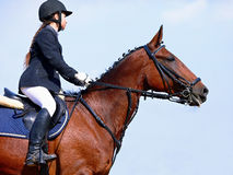The sportswoman on a sports red horse. Royalty Free Stock Images