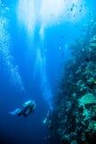 Sporttauchen des blauen Wassers des Tauchers bunaken Indonesien-Seeriffozean Lizenzfreie Stockfotografie