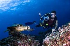 Sporttaucher, der eine Schwimmenschildkröte fotografiert Stockbild