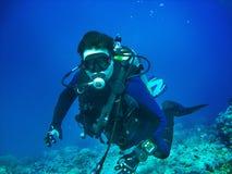 Sporttaucher ist Unterwasser Er trägt in der vollen Sporttauchenausrüstung: Maske, Regler, BCD, Flossen Taucher ist auf dem Ba de lizenzfreie stockfotos