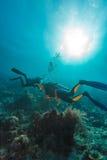Sporttaucher nähern sich Meeresgrund stockfotos