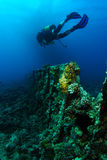 Sporttaucherschwimmen über den Rippen des sehr alten Schiffswrackes lizenzfreie stockbilder