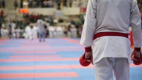 Sporttonåringar - ungeidrottsmän på karatetatamien - ordnar till för kamp stock video