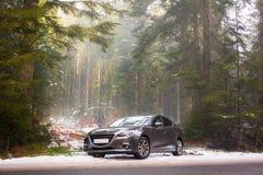 Sportwagen im nebelhaften Wald lizenzfreies stockbild