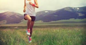 Sporty бегун следа женщины бежать на злаковике Стоковая Фотография RF