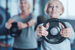 Sporty выбытая дама держа диск веса на фитнес-клубе Стоковое Изображение RF