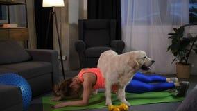 Sporty женщина делая планку под телом собаки видеоматериал