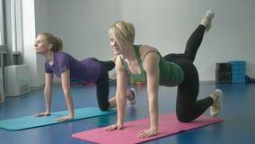 Sporty женщины делая гимнастические тренировки или работая в классе фитнеса акции видеоматериалы