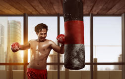 Sporty asian male boxer exercising with punching bag Royalty Free Stock Photos