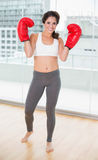 Sporty cheerful brunette wearing boxing gloves Royalty Free Stock Photography