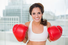Sporty cheery brunette wearing boxing gloves Stock Photos