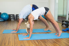 Sporty couple in bending posture at fitness studio Royalty Free Stock Photos