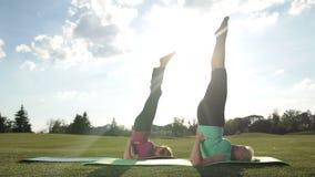 Sporty damy robi do góry nogami foki pozie outdoors zdjęcie wideo
