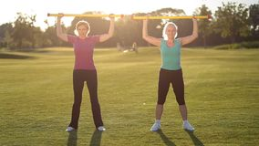 Sporty damy robi sprawności fizycznej ćwiczeniu z fitbar zdjęcie wideo
