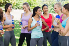 Sporty friends talking in park Royalty Free Stock Images