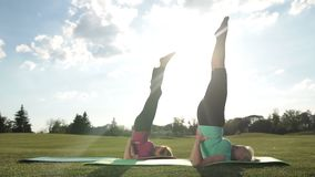 Sporty ladies doing upside down seal pose outdoors stock video footage