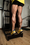 Sporty Legs Calf Royalty Free Stock Images