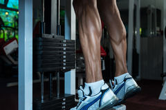 Sporty Legs Calf. Bodybuilders Legs Shot In A Gym In Workout Stock Photos