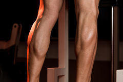 Sporty Legs Calf. Bodybuilders Legs Shot In A Gym In Workout Stock Image